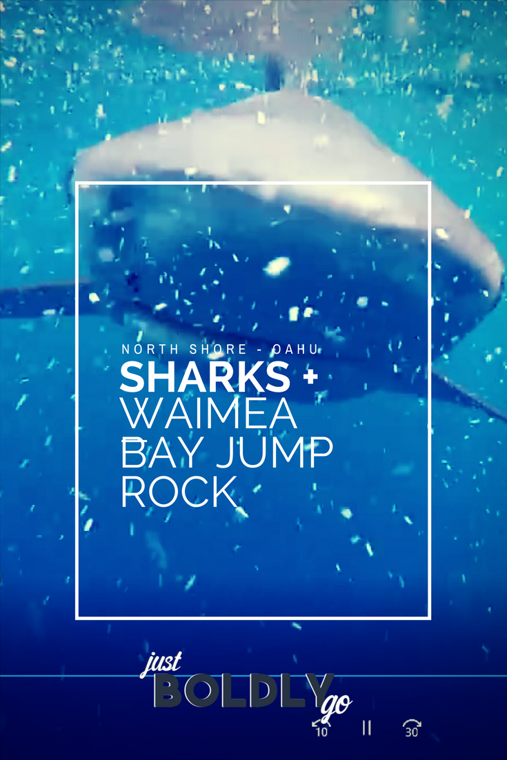 Shark Cage + Waimea Bay Jumping Rock