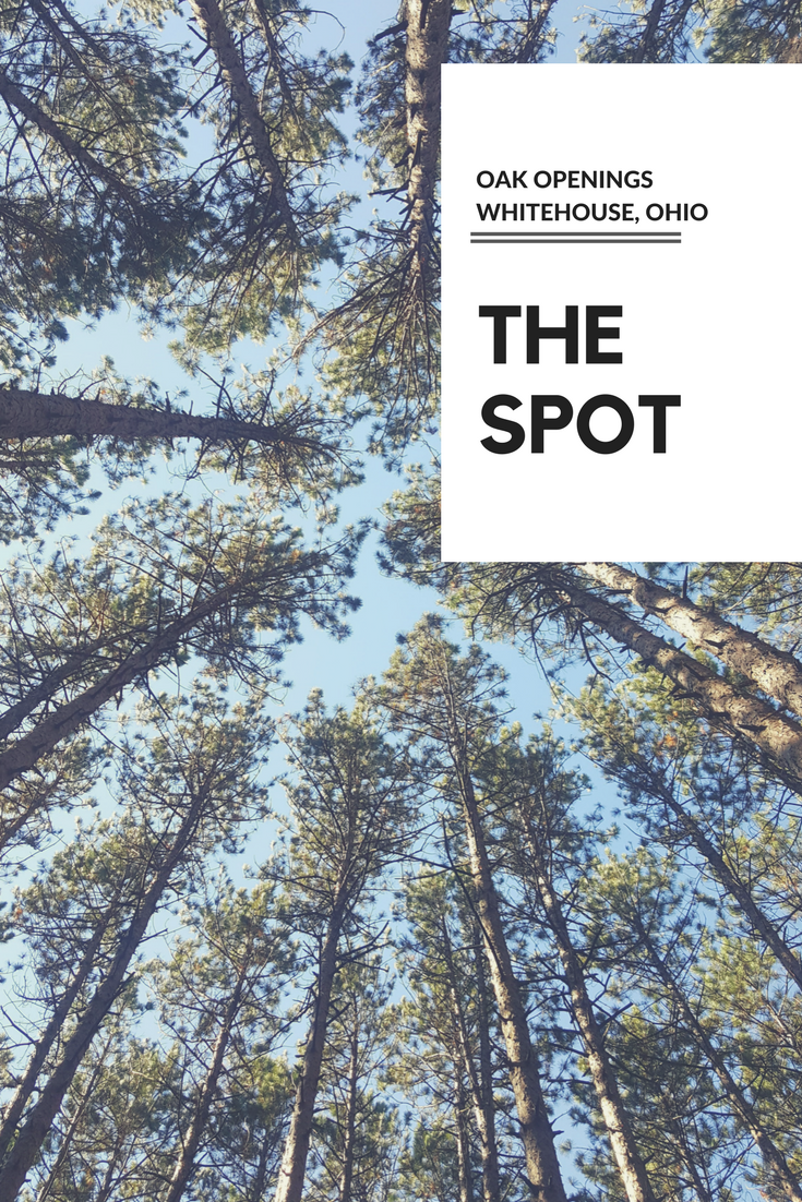 The Spot – Oak Openings (NW Ohio)